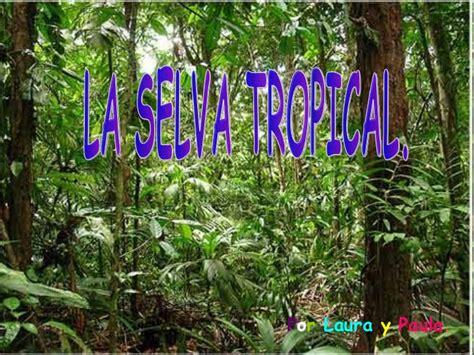 la selva tropical la selva tropical