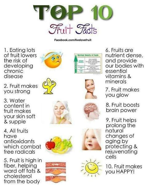 The Idea Dieting Real Facts by 25 Best Ideas About Fruit Facts On Fruit