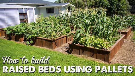 how to build raised beds raised garden beds pallets www pixshark com images