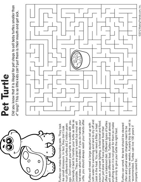 pet turtle coloring page free coloring pages of eastern box turtle