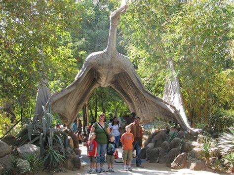 animali volanti 10 giganteschi mostri preistorici che non erano dinosauri