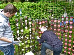 Bottle towers can constitute a successful kitchen garden in a minimal