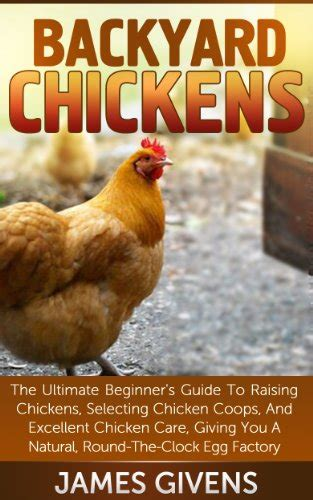 how to take care of backyard chickens how to take care of chickens on the farm or at home back roads living