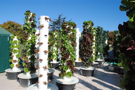 Aeroponic Tower Garden by Aeroponics Outreach Chapala Gardens Tribe Awesome