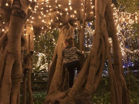 City Of Lights Brisbane Lights Up And You Ve Got To See Lights Brisbane