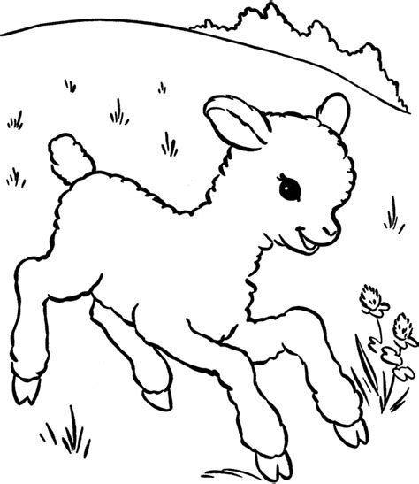 sheep coloring pages coloring home