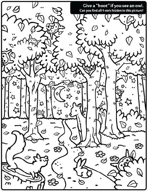 complicated coloring pages for adults andrew bernhardt s hidden owl find coloring page esl pinterest coloring