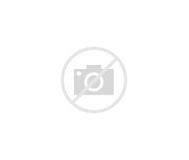 Image result for Freddie Mercury