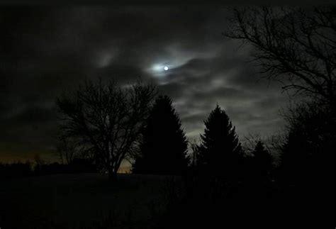 la noche de la b01ez6a1mq los rboles y la noche