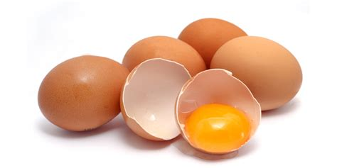 carbohydrates in eggs whole egg protein true nutrition community