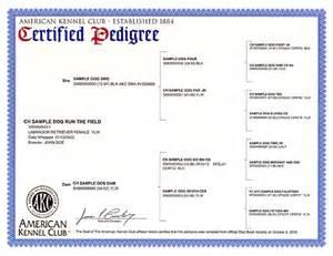 sample akc certified pedigree american kennel club