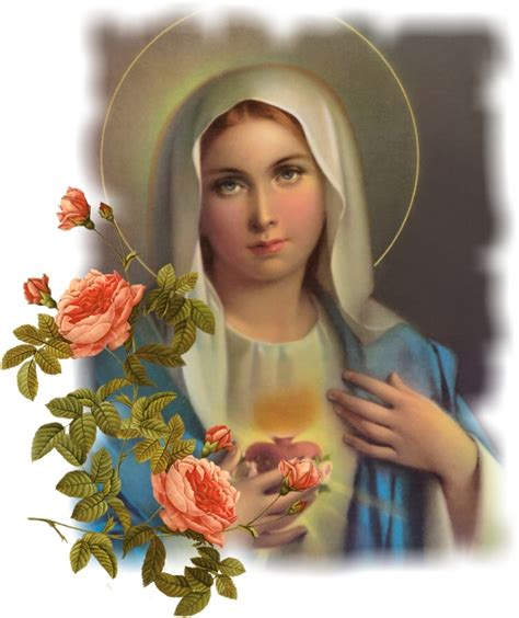 biography of mother mary patron mary the blessed virgin