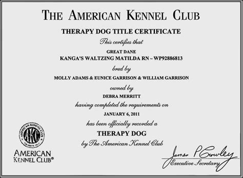 for therapy certification deb merritt s great dane website