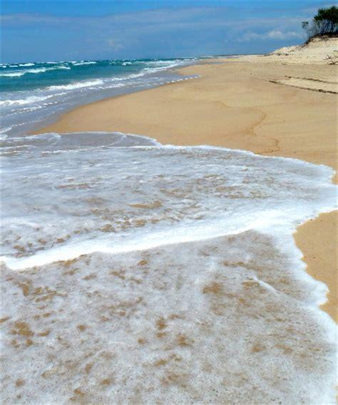 boat mooring stradbroke island shells sketches sand