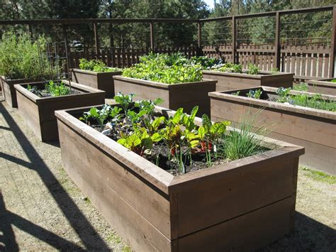 raised garden beds   build  install