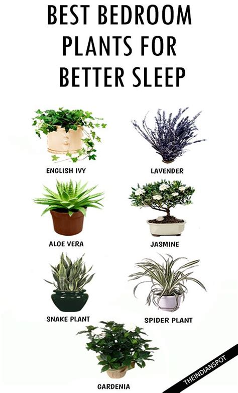 best plants for bedrooms design addict mom do you want a better sleep add these