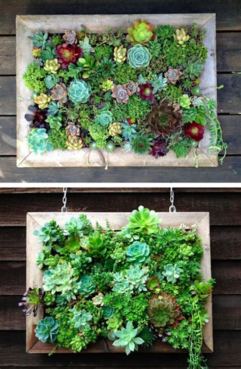 Vertical Garden Succulent Community Post 39 Insanely Cool Vertical Gardens