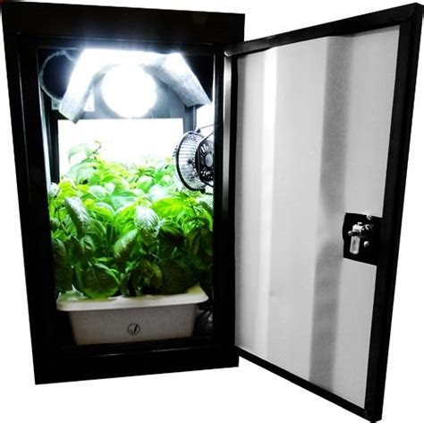 Grow Closet Kit by Grow Tent Vs Grow Box Which Grow Setup Is For You