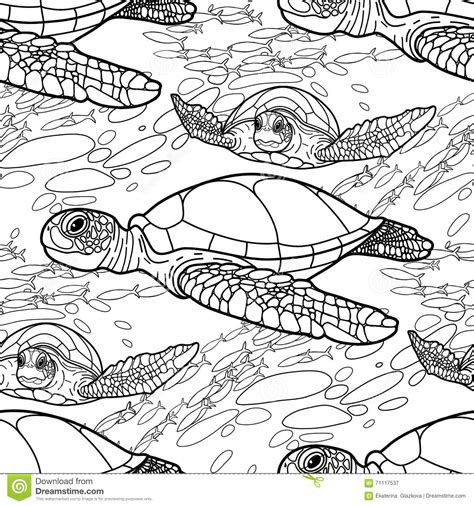 coloring page vector hawksbill sea turtle pattern stock vector image 71117537