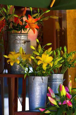 Nearest Flower Shop by Levonne S Pretty Pics July 2010