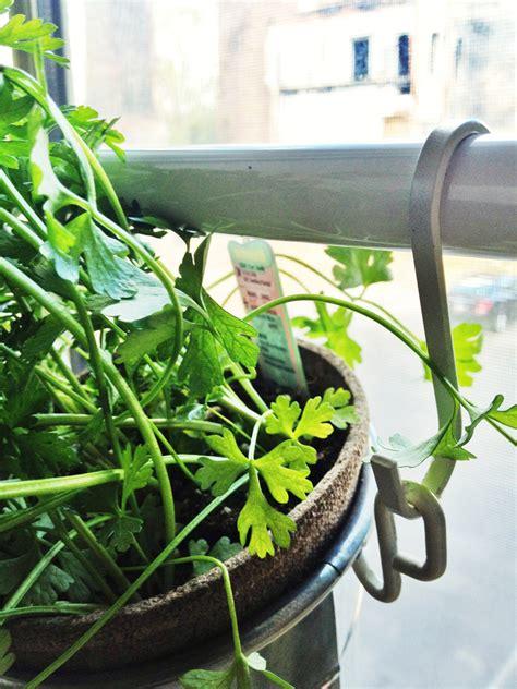 Window Herbs Window Herb Garden Ikea Hackers Ikea Hackers