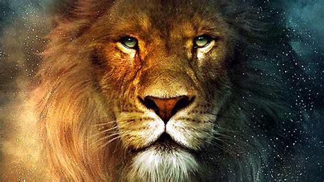 film lion rugit trailer du film le monde de narnia chapitre 1 le lion