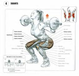 Roman Chair Leg Lifts How To Perform A Proper Squat No Excuses Health