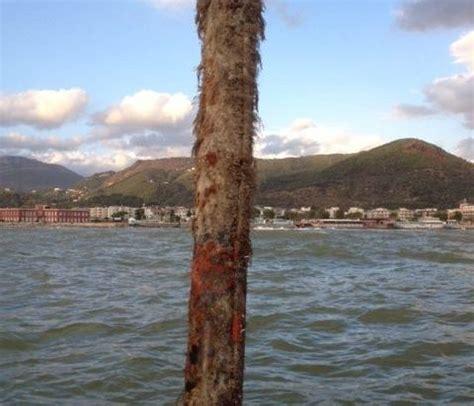 capitaneria di porto salerno salerno palo pericoloso segnalazione della capitaneria