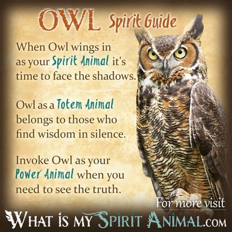 Owl Symbolism Pure Spirit | who s watching who owl symbolism meaning dare to be
