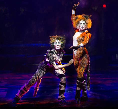 cats musical cats the musical comes to melbourne melbourne