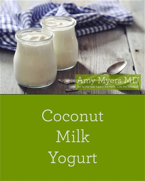 Coconut Detox Leaky Gut by Coconut Milk Yogurt Recipe Yogurt Coconut And Coconut