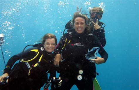 dive and dive learn to scuba dive and get a padi diving certification