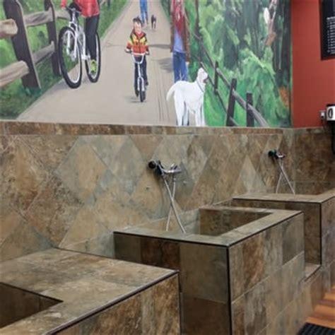 pet valu wash pet valu 12 reviews pet shops 1308 chapel way gambrills md united