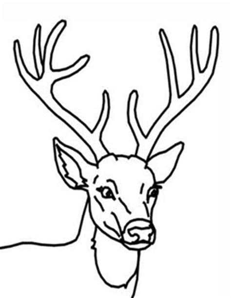 buck and doe coloring pages