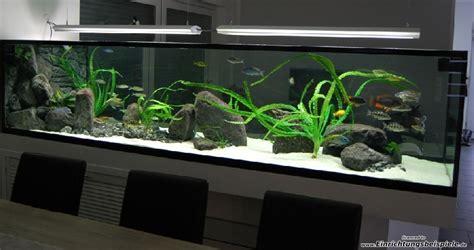 Beleuchtung Aquarium by Beleuchtung Aquarium T5 Led Dimmbar Ghl Profilux 240 300cm Alu