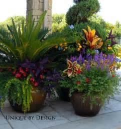Potted Garden Ideas Best 25 Potted Plants Patio Ideas On