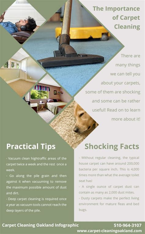 upholstery cleaning oakland carpet cleaning oakland infographic