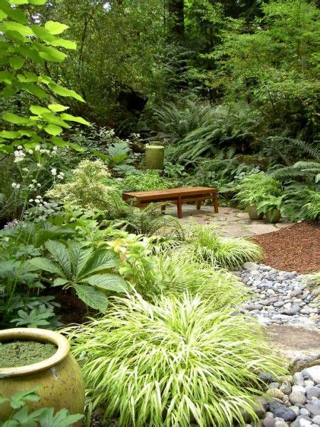 Tropical Rock Garden 169 Best Images About Garden Ideas On Kangaroo Paw Agaves And Tropical