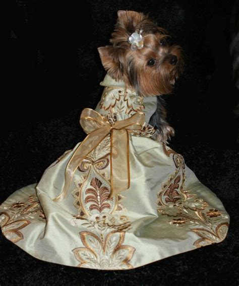 yorkie wedding 17 best images about yorkie evening wedding dress and tutu on pets puppys