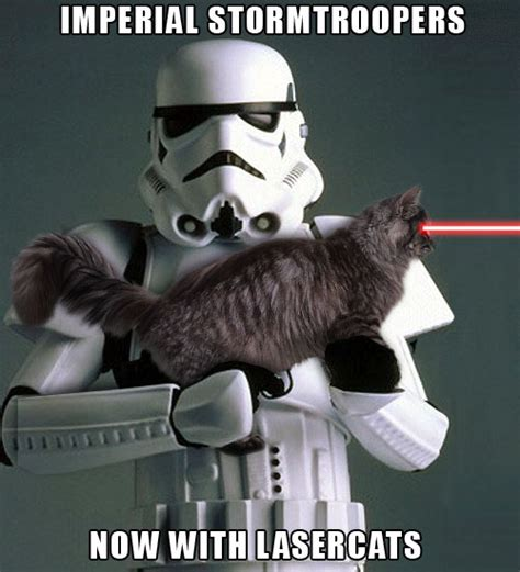 Laser Cat Meme - stormtroopers with laser cats star wars catsstar wars cats