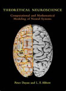 computational models of brain and behavior books 456 best images about how our brain works on