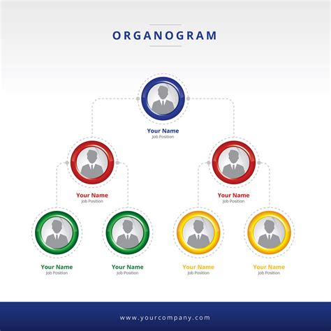 vector layout system organogram layout vector download free vector art stock