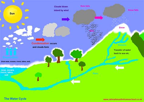 water cycle placemat science ks2 the resources of islamic homeschool in the uk