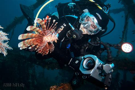 5 Best Underwater Video Editing Tips Underwater