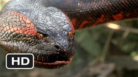 film ular anaconda full movie anaconda official trailer actors locations photos and
