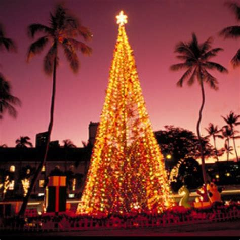 12 best christmas in hawaii images on pinterest hawaii