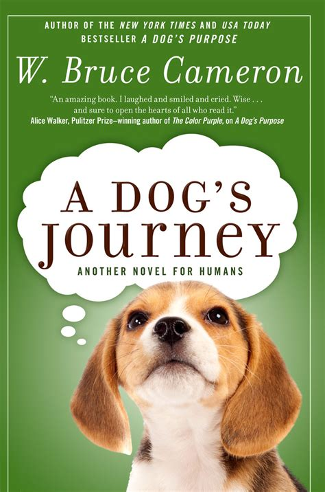 a s journey a s journey seattle kennel club