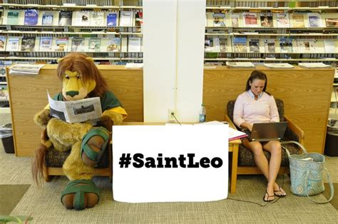 St Leo Mba Healthcare by 50 Best Images About Leo On