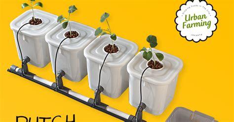 membuat hidroponik dutch bucket urban farming dutch bucket hidroponik 4 lubang gang