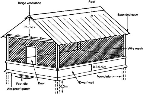 broiler house plans pictures of poultry pen house design layout